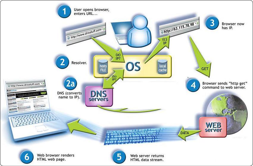 DNS là gì